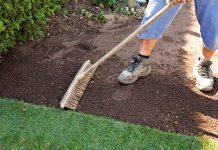 Правила висівання газонної трави