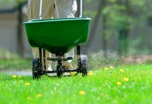добрива для газону у подробицях