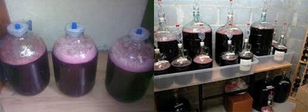 Як приготувати домашнє вино із вишні