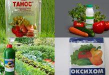 фунгициды от болезней растений